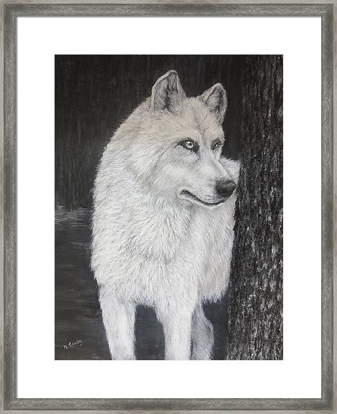 White Wolf On Guard Framed Print