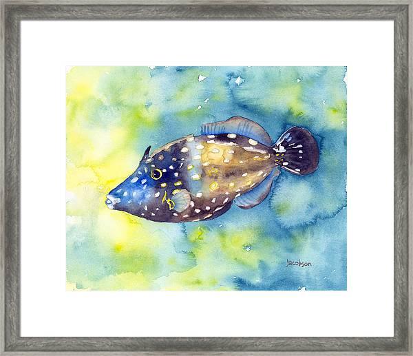 Whitespot Filefish Framed Print