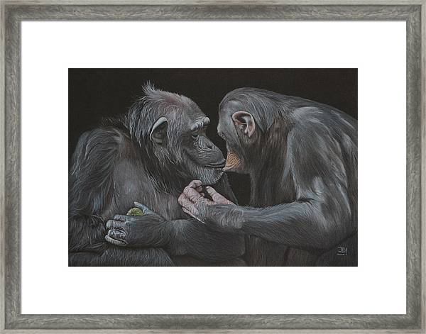 Who Gives A Fig? Framed Print