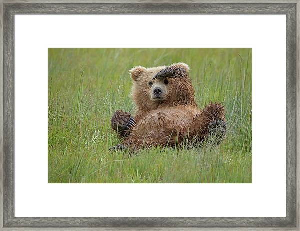 Who's There ? Framed Print