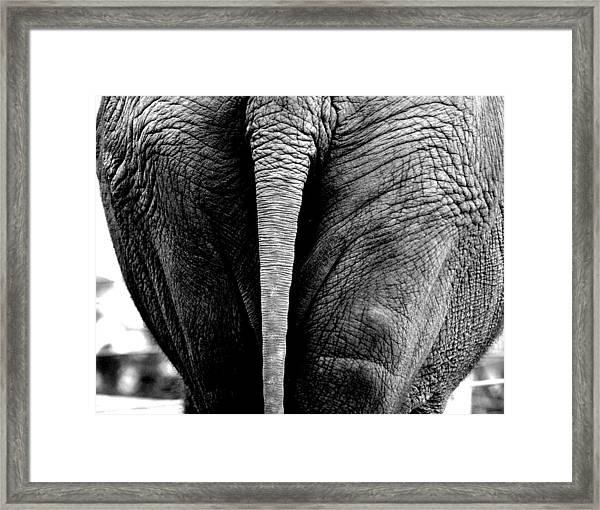 Wide Load Framed Print