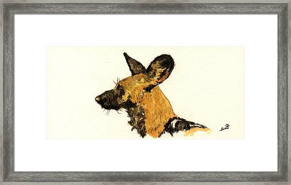 Wild Dog Framed Print