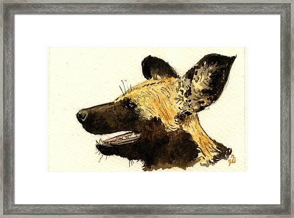Wild Dog Lycaon Framed Print