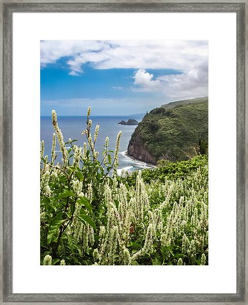 Wild Flowers At Pololu Framed Print