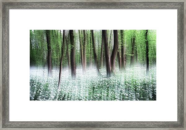 Wild Garlic Framed Print