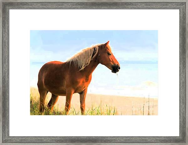 Wild Horses Can't Tear Me Away Framed Print