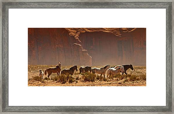 Wild Horses In The Desert Framed Print