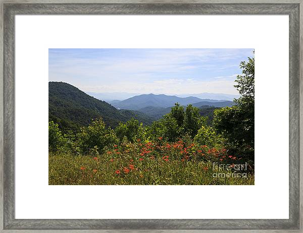Wild Lilies With A Mountain View Framed Print