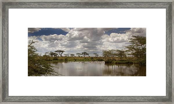 Wild Pond Framed Print
