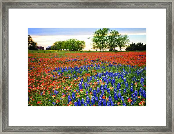 Wildflower Tapestry Framed Print
