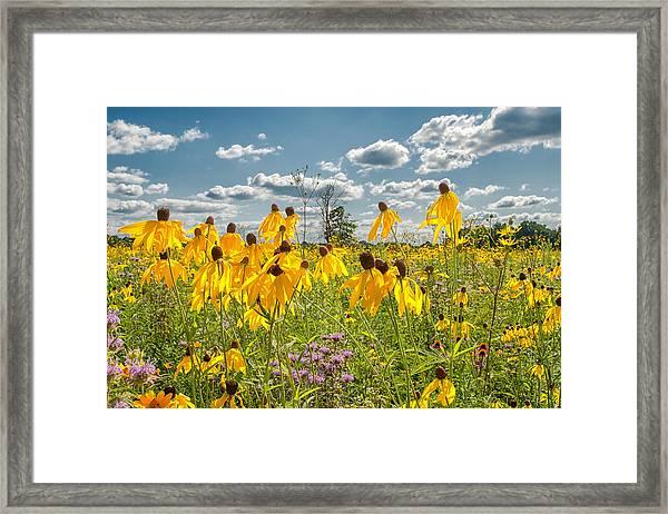 Wildflowers Dance Framed Print