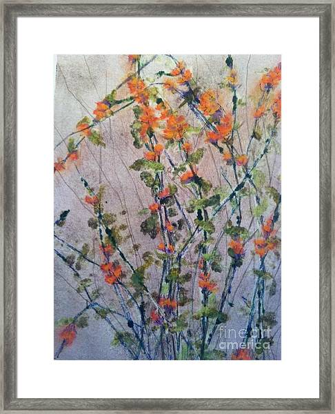 Wilds Framed Print