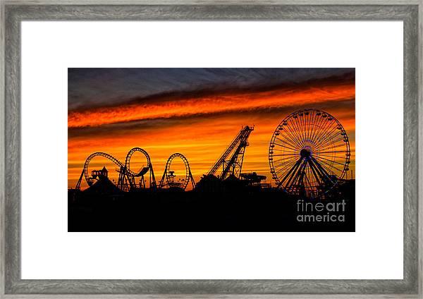 Wildwood At Dawn Framed Print