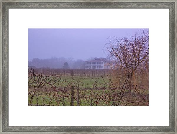 Willow Creek In Fog Framed Print