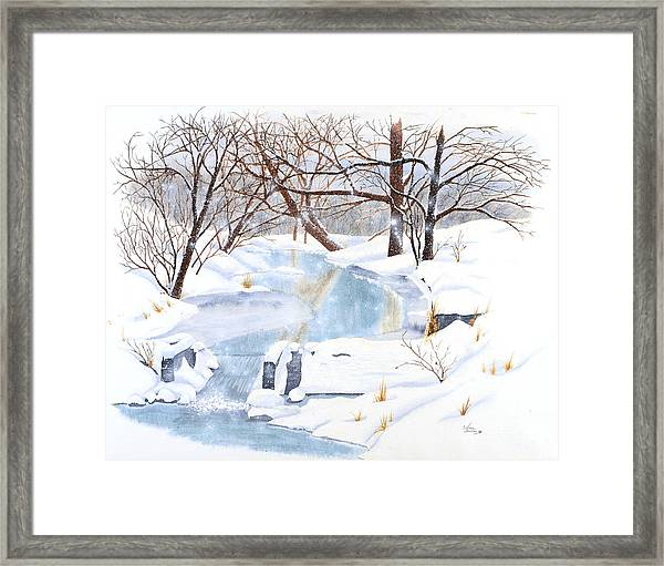 Willowood Winter Framed Print
