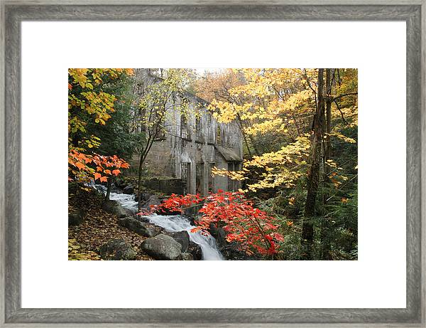 Willsons Ruins In Gatineau Park In Quebec Framed Print