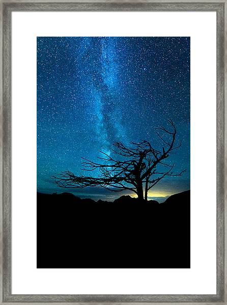 Framed Print featuring the photograph Chance by Dustin  LeFevre