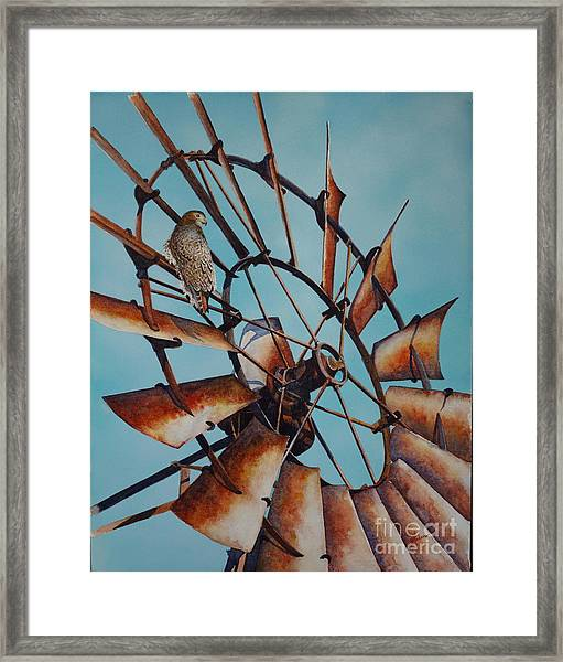 Windmill And Hawk Framed Print
