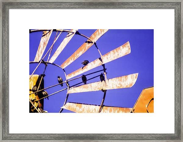 Windmill Birds Framed Print