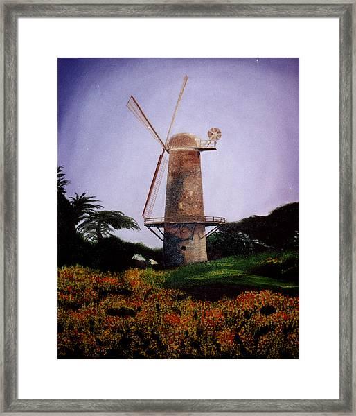 Windmill In Golden Gate Park Framed Print