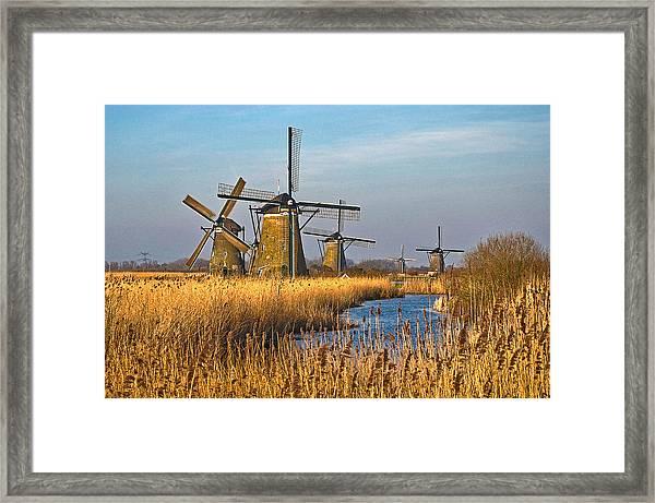 Windmills And Reeds Near Kinderdijk Framed Print