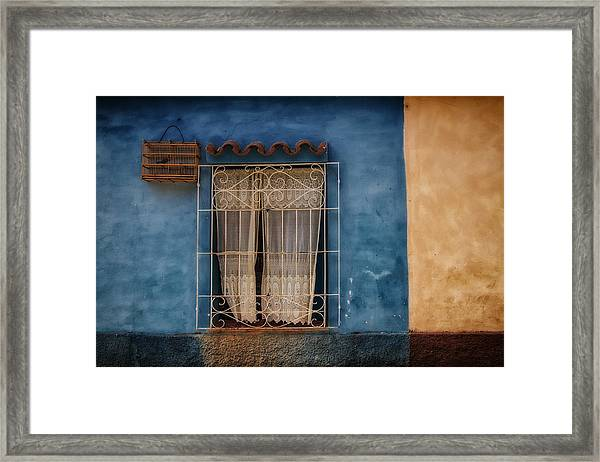 Window And The Birdcage Framed Print