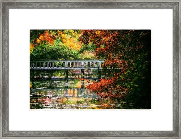 Window Into Autumn Framed Print