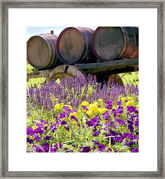 Wine Barrels At V. Sattui Napa Valley Framed Print