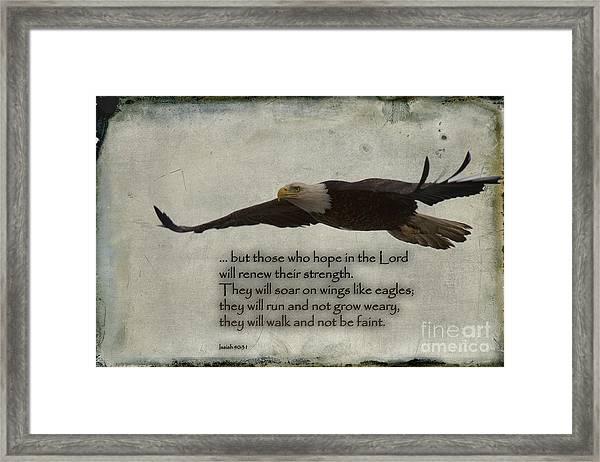 Wings Like Eagles Framed Print