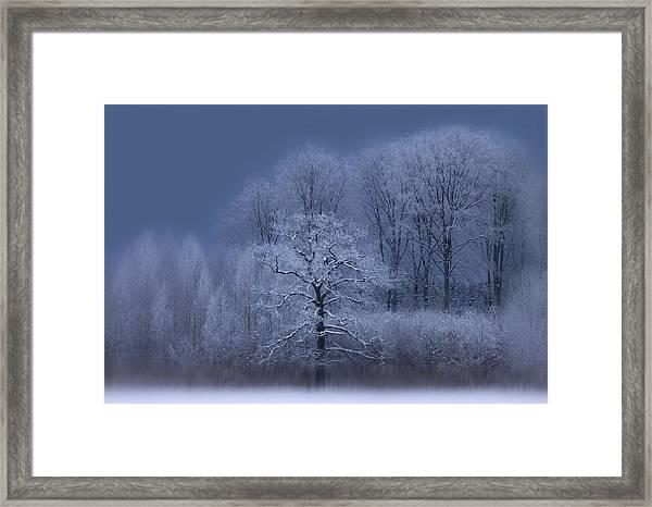 Winter Framed Print by Allan Wallberg