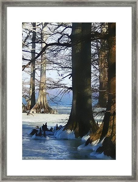 Winter At Reelfoot Lake Framed Print