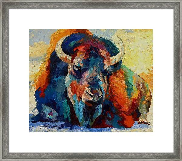 Winter Bison Framed Print