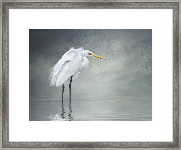 Winter Breeze Framed Print