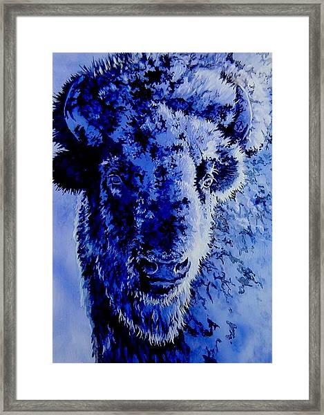 Winter Buffalo Framed Print