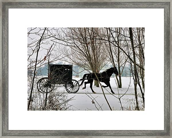 Winter Buggy Framed Print