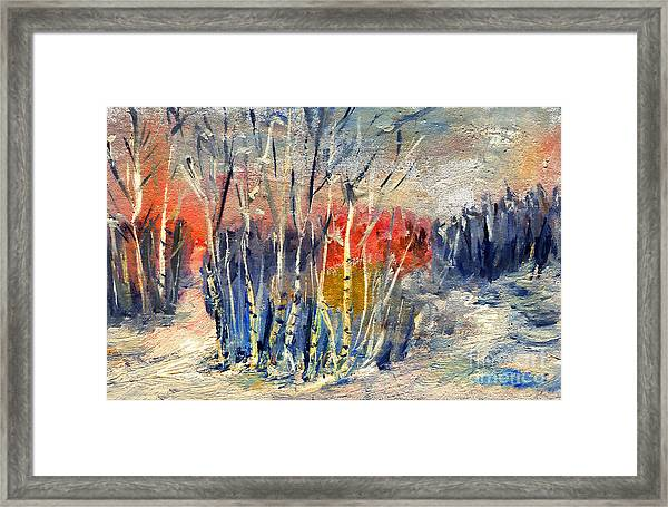 Winter Colors Framed Print