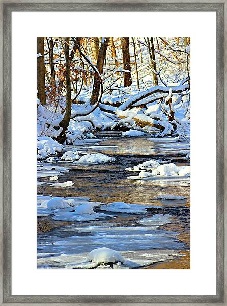 Framed Print featuring the photograph Winter Creek by Candice Trimble