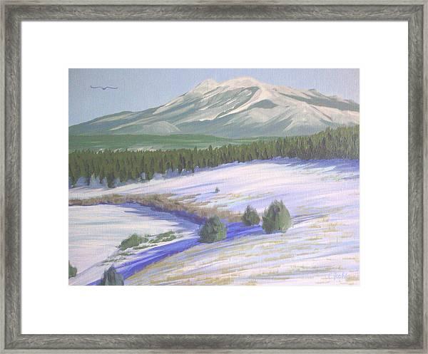 Winter Eagle At Mormon Lake Framed Print