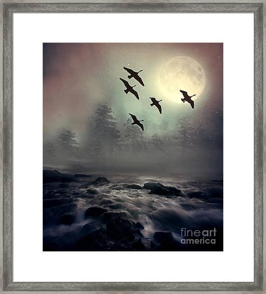 Winter Golden Hour Framed Print