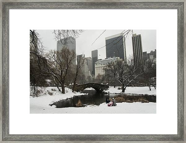 Winter In Central Park Framed Print