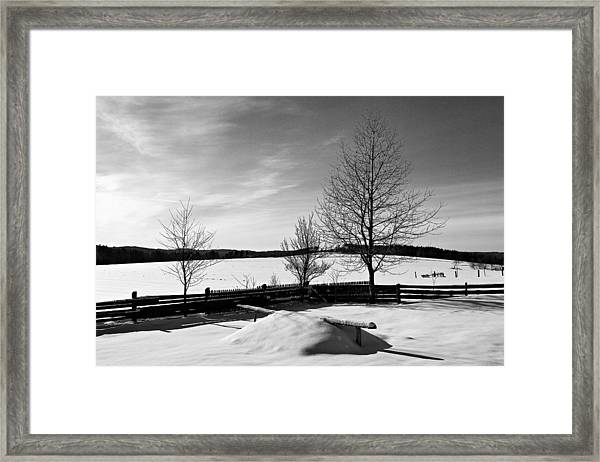 Winter In Roztocze Framed Print