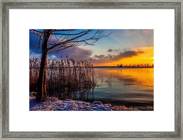 Winter Lake Sunset With A Tree Lighted In Red And Orange  Framed Print
