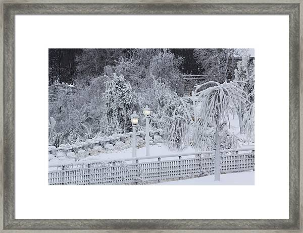 Winter Land Framed Print