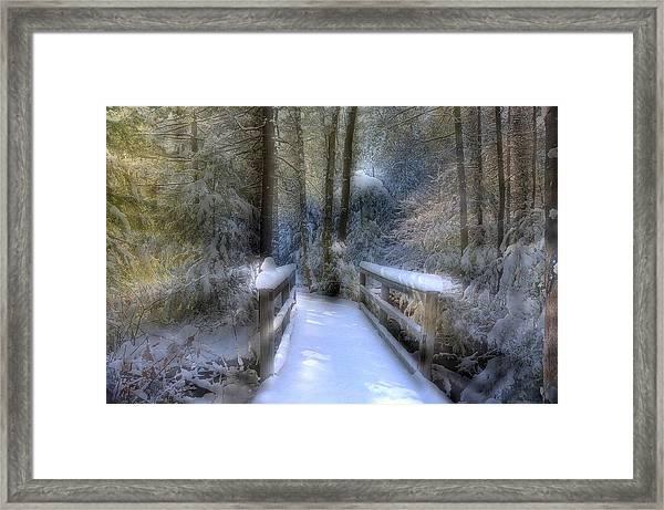 Winter Light On Bridge Framed Print