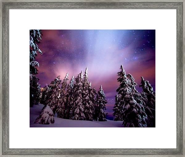 Winter Nights Framed Print
