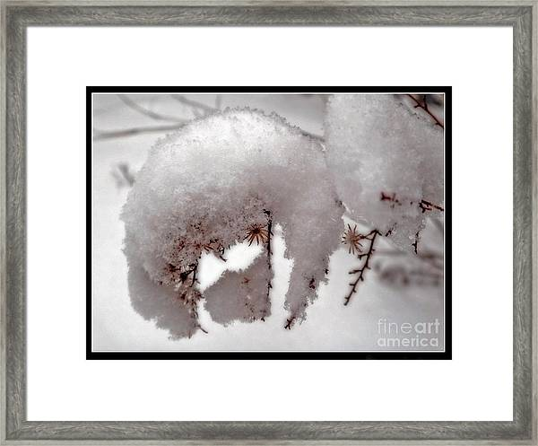 Winter On Aberdeen Framed Print