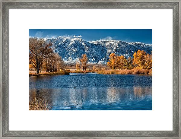 Winter Or Fall Framed Print