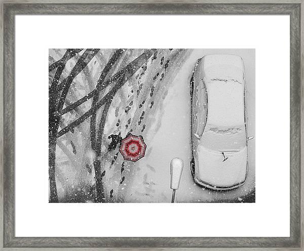 Winter Passengers Framed Print