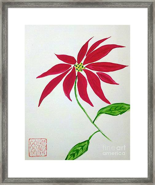 Winter Poinsettia Framed Print