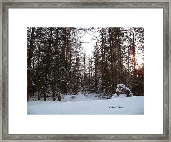 Winter Quiet Framed Print